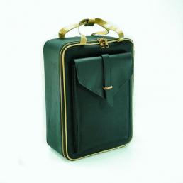 Профессиональный кейс для косметики и инструментов Calmi 2-1009-2 Gold